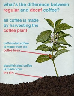 what's the difference between regular and decaf coffee